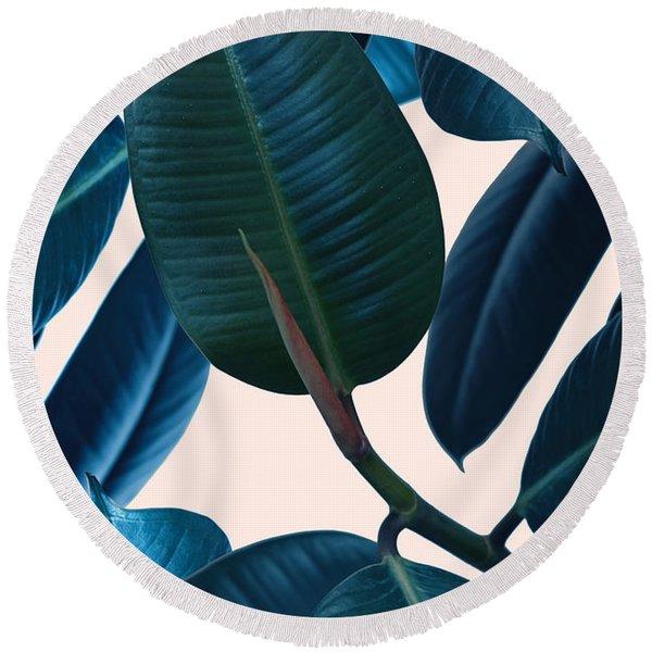 Ficus Elastica 2 Round Beach Towel