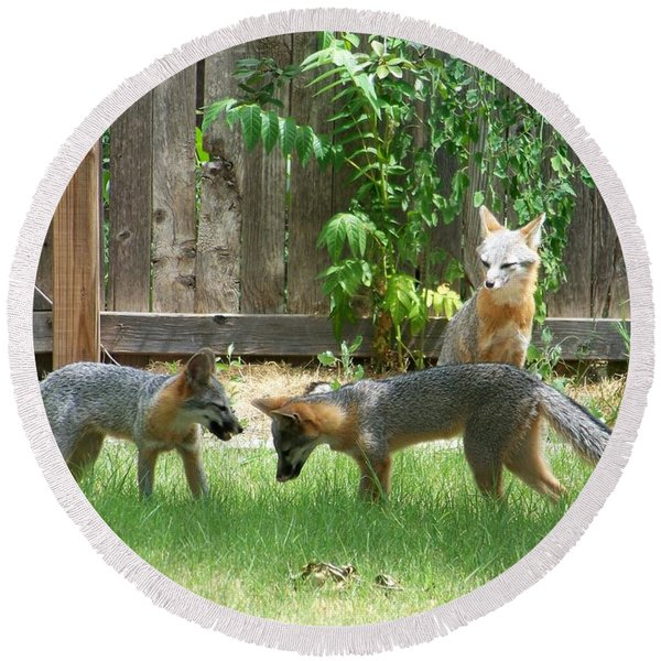 Fox Family Round Beach Towel