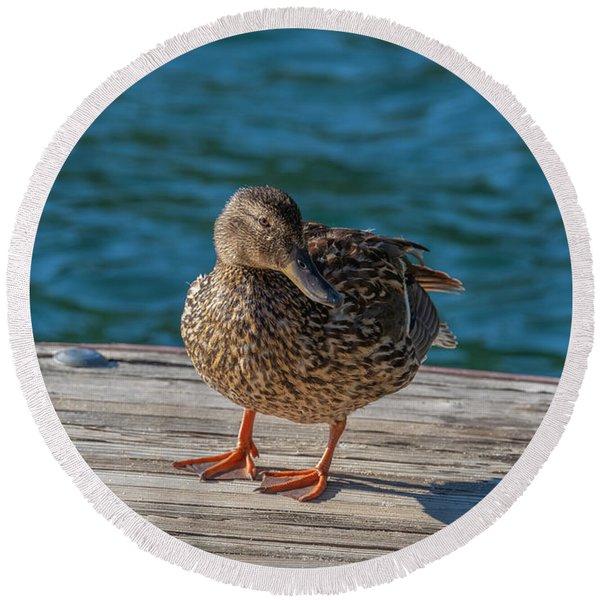 Friendly Duck Round Beach Towel