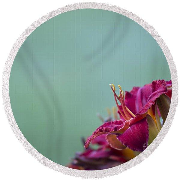 Fuchsia In Bloom Round Beach Towel