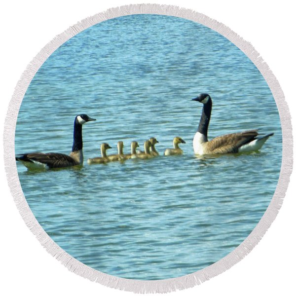 Geese Proud Parents Round Beach Towel