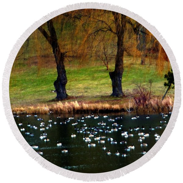 Geese Weeping Willows Round Beach Towel