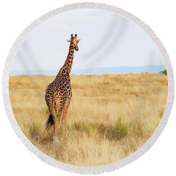 Giraffe Walking In Kenya Africa - Vertical Round Beach Towel