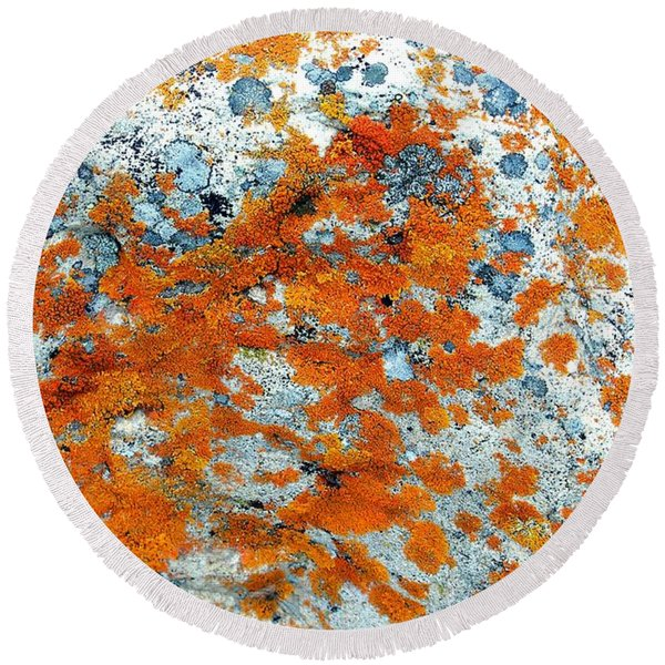Golden Lichen Round Beach Towel