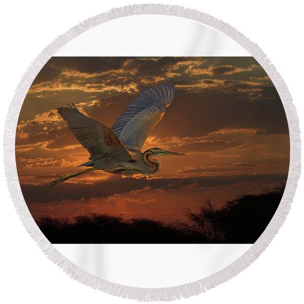 Goliath Heron At Sunset Round Beach Towel