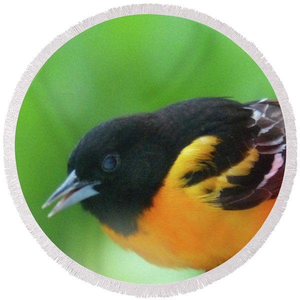 Good Morning Mr. Oriole Round Beach Towel