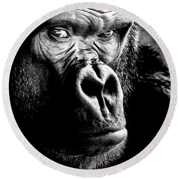 Gorilla Canvas Print, Photographic Print, Art Print, Framed Print, Greeting Card, Iphone Case, Round Beach Towel