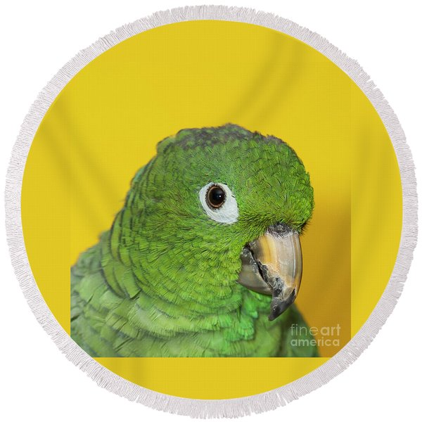 Green Parrot Head Shot Round Beach Towel