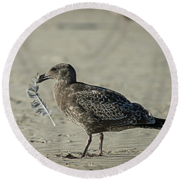 Gull And Feather Round Beach Towel