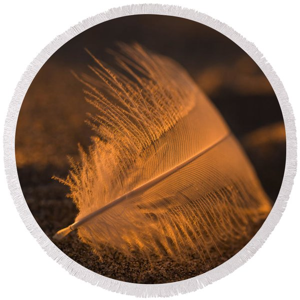 Gull Feather At Sunset Round Beach Towel