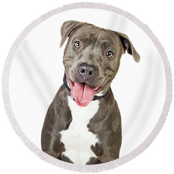 Happy Friendly Smiling Pit Bull Dog  Round Beach Towel