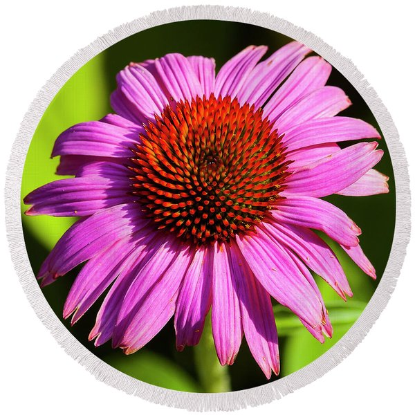 Hot Pink Flower Round Beach Towel
