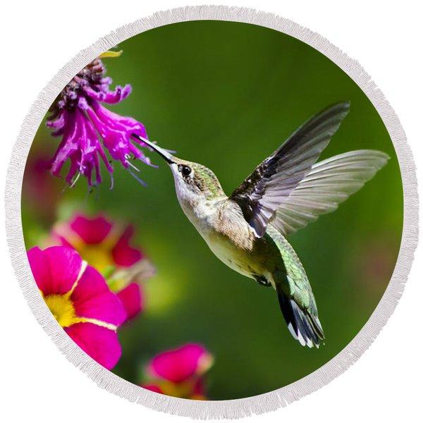 Hummingbird With Flower Round Beach Towel