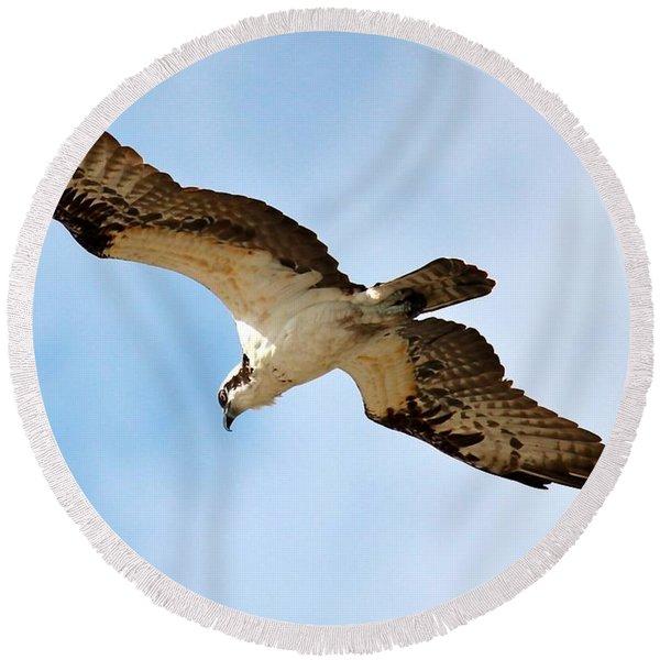 Hunter Osprey Round Beach Towel