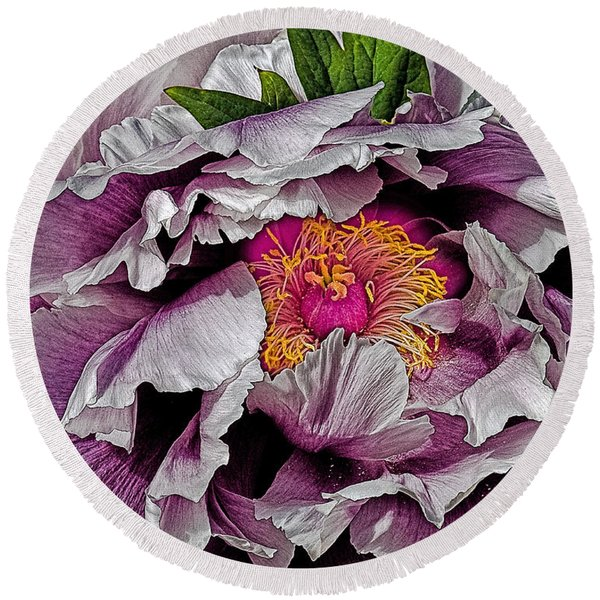In The Eye Of The Peony Round Beach Towel
