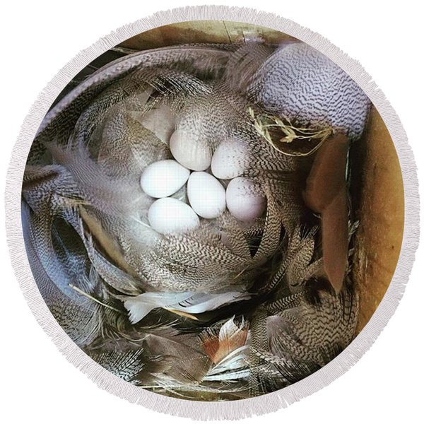 Tree Swallow Nest Of Feathers Round Beach Towel