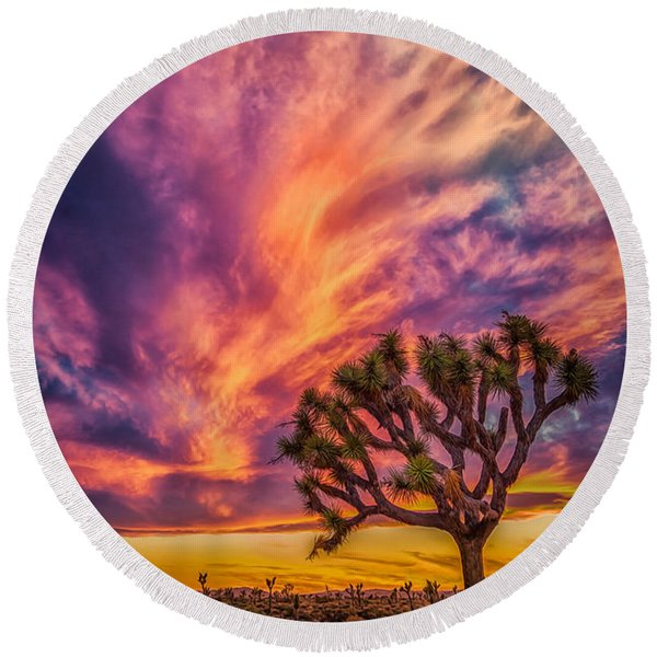 Joshua Tree In The Glowing Swirls Round Beach Towel