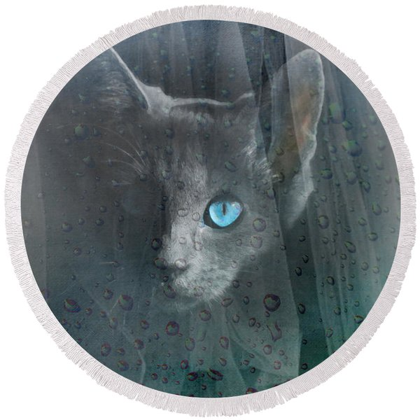 Kitty At The Window Round Beach Towel