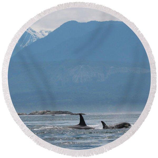 L Pod Orca Whales Round Beach Towel