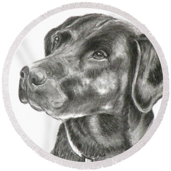 Lab Charcoal Drawing Round Beach Towel