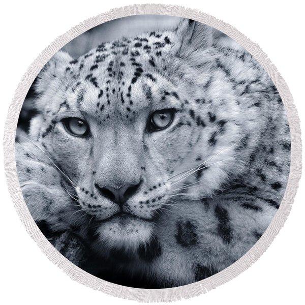 Large Snow Leopard Portrait Round Beach Towel