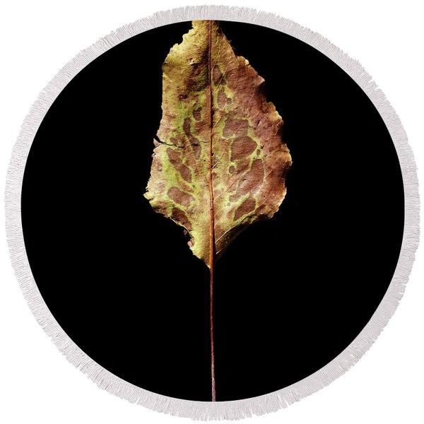 Leaf 6 Round Beach Towel