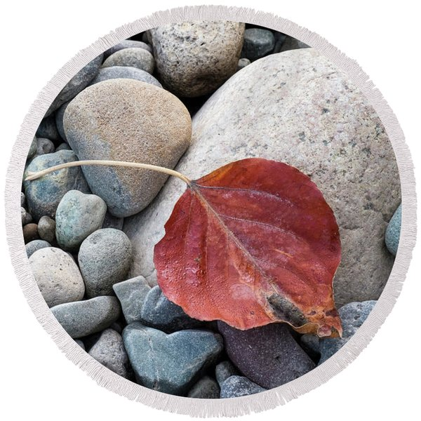 Round Beach Towel featuring the photograph Leaf On River Rocks by Mary Lee Dereske