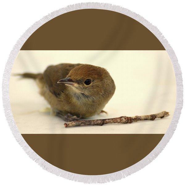 Little Bird 2 Round Beach Towel