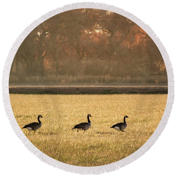 Round Beach Towel featuring the photograph March Of The Geese by Mary Lee Dereske