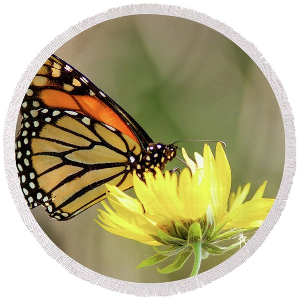 Monarch Butterfly 071416 Round Beach Towel