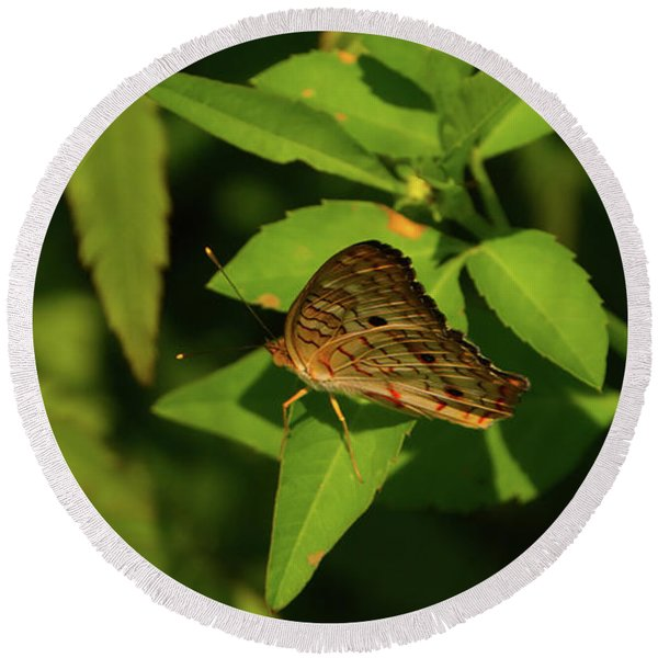 Offset Image Of A Brown Butterfly Round Beach Towel