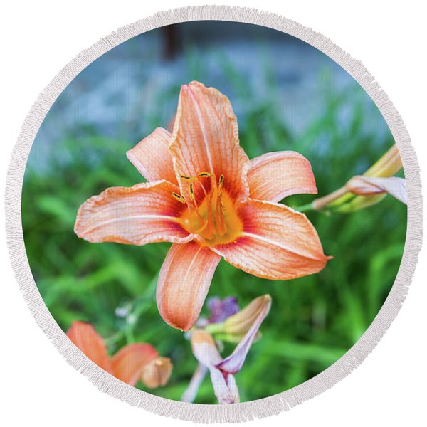 Orange Daylily Round Beach Towel