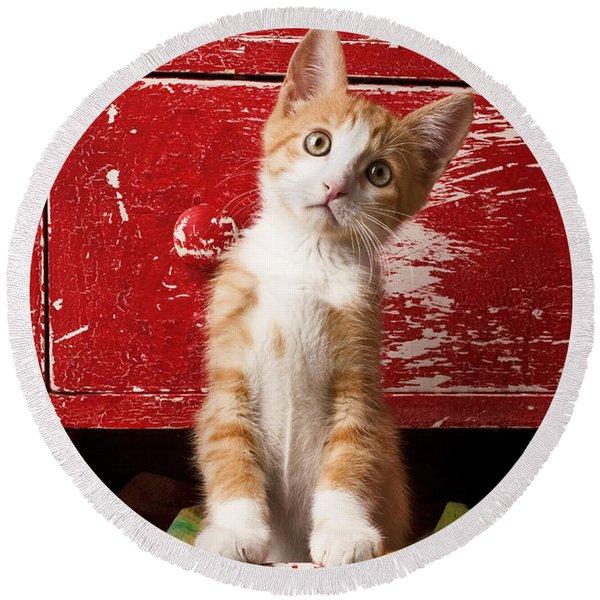 Orange Tabby Kitten In Red Drawer  Round Beach Towel
