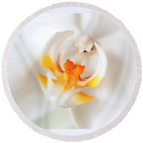 Round Beach Towel featuring the photograph Orchid Detail by Ariadna De Raadt