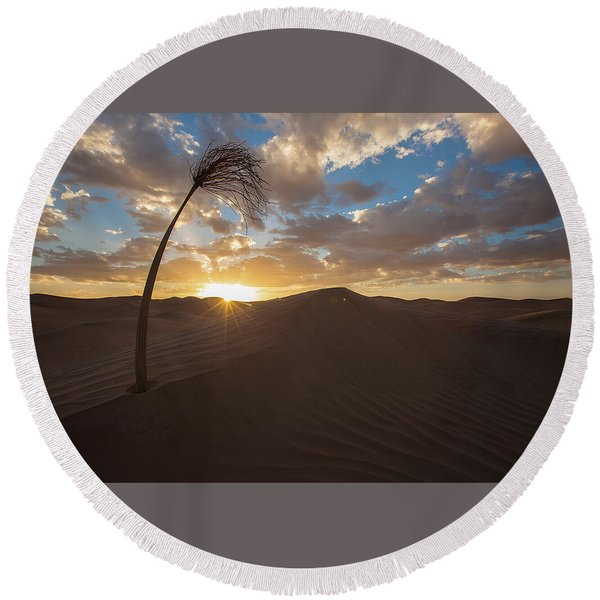 Palm On Dune Round Beach Towel