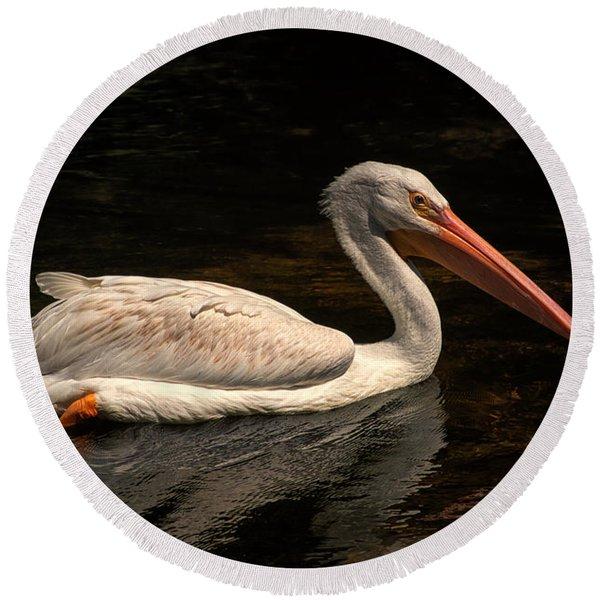 Pelican Swimming In Salisbury Round Beach Towel