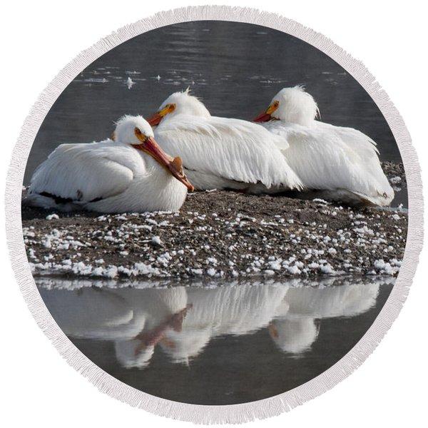 Pelicans Round Beach Towel