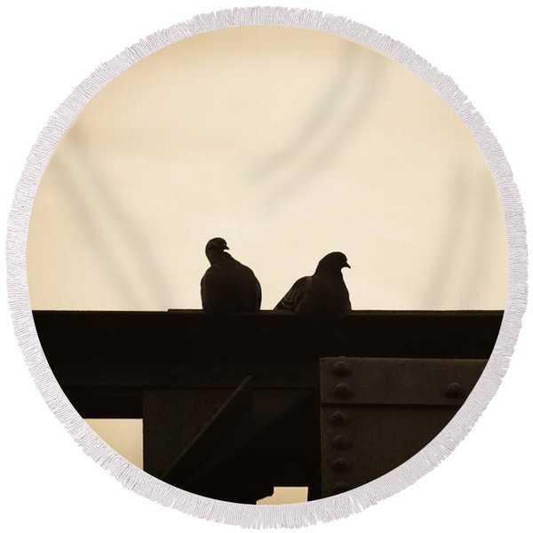 Pigeon And Steel Round Beach Towel