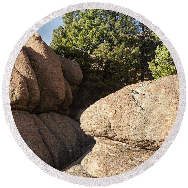 Round Beach Towel featuring the photograph Pines In Granite by Tim Newton