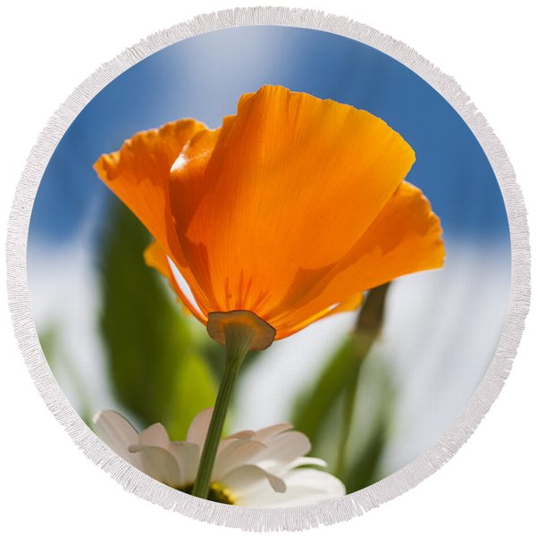 Poppy And Daisies Round Beach Towel