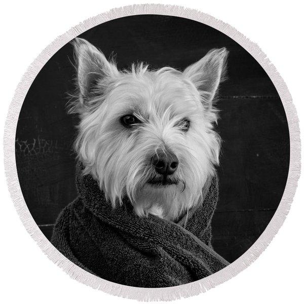 Portrait Of A Westie Dog Round Beach Towel