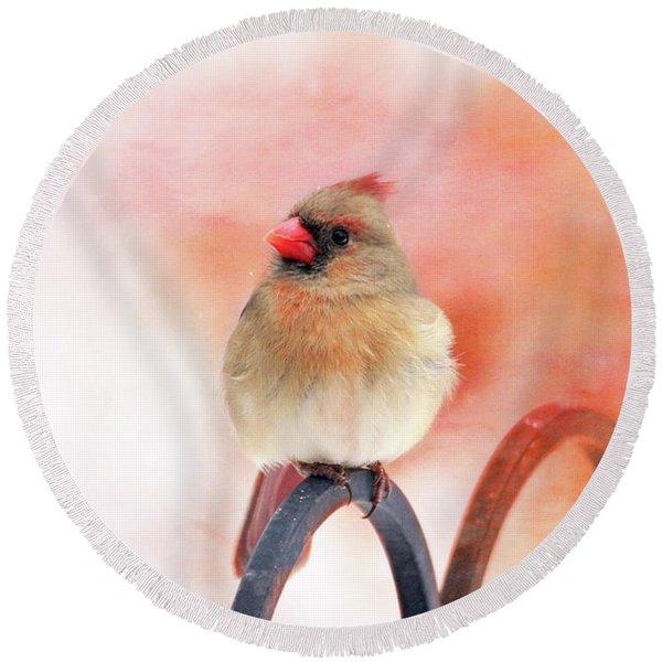 Pretty Cardinal Round Beach Towel