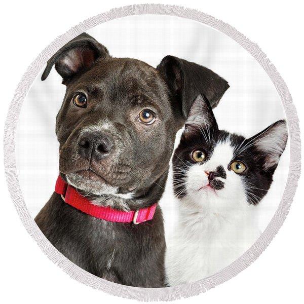 Puppy And Kitten Closeup Over White Round Beach Towel