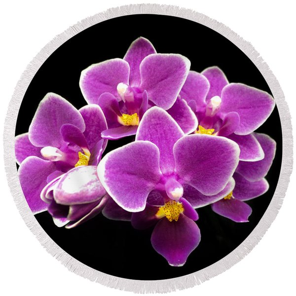 Purple Orchid Round Beach Towel