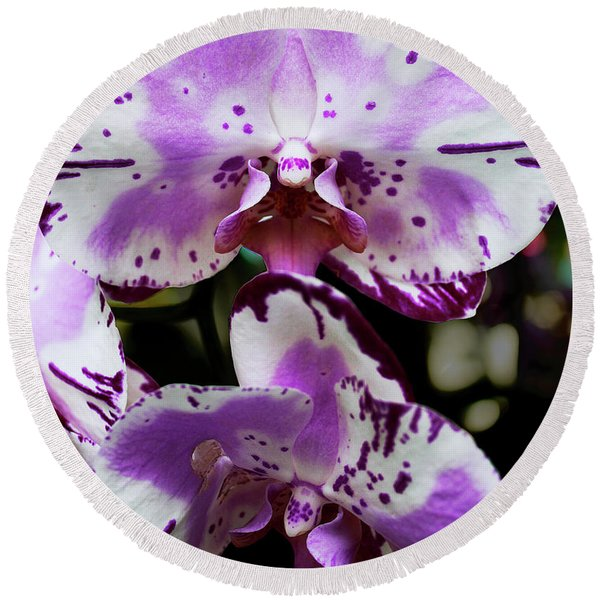 Purple And White Orchid Round Beach Towel