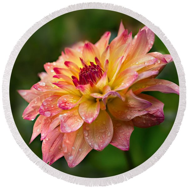 Rainy Dahlia Round Beach Towel