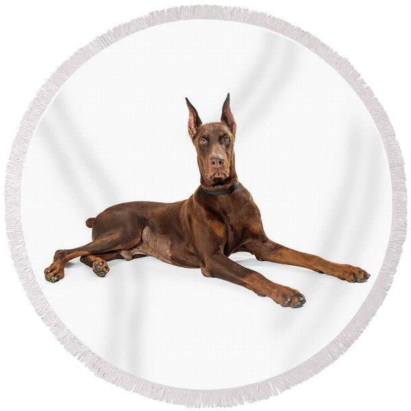 Red Doberman Pinscher Dog Lying Profile Round Beach Towel