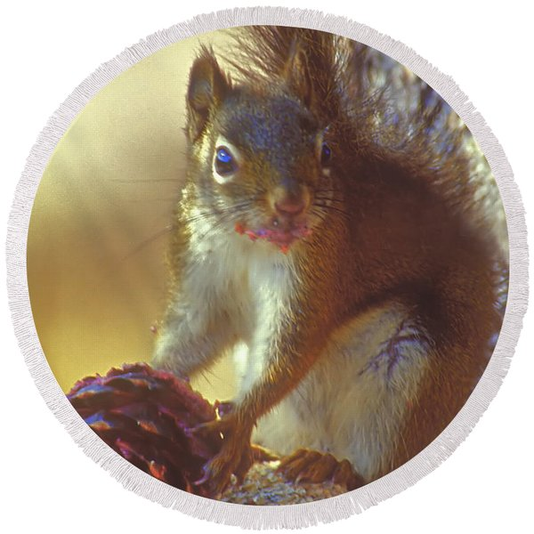 Red Squirrel With Pine Cone Round Beach Towel