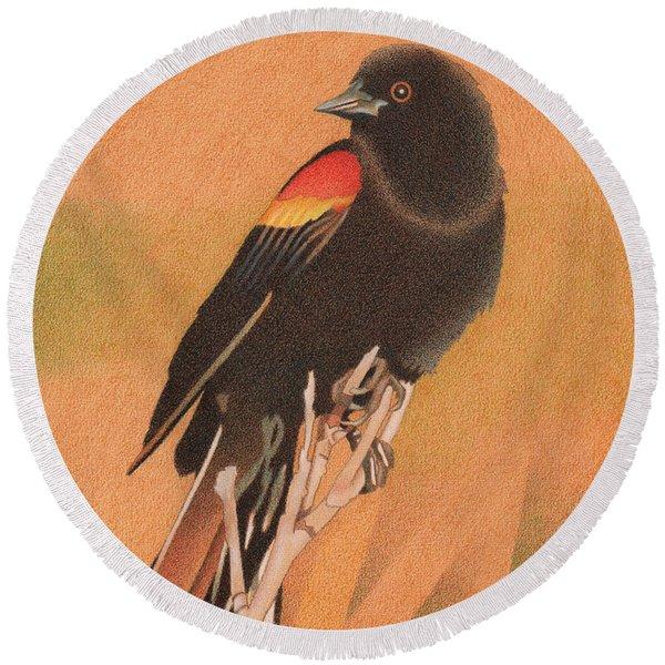 Red-winged Blackbird 3 Round Beach Towel