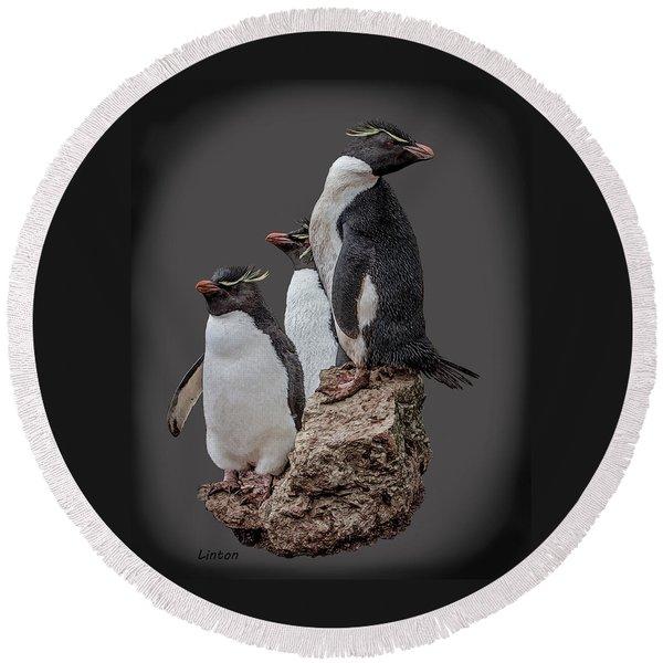 Rockhopper Penguins Round Beach Towel